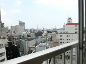 ライオンズマンション南平台1105号室 (72).jpg