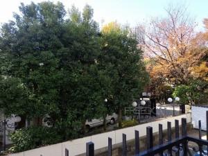 秀和恵比寿レジデンス-2F眺望写真