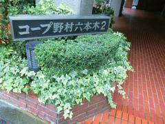 コープ野村六本木Ⅱ<font color=red>【成約】</font>
