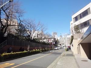 青山コーポラス東京リノベ (3)