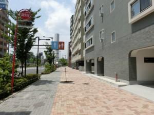 松涛パークハウス (3)