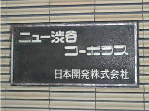 ニュー渋谷コーポラス (8).jpg