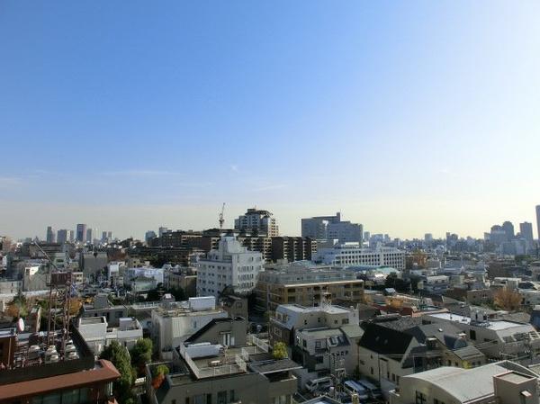 南青山パークマンション9F (20).jpg