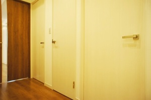 スカイプラザ赤坂202号室 (10).jpg