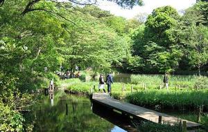 自然公園.jpg