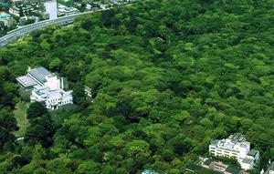 自然公園2