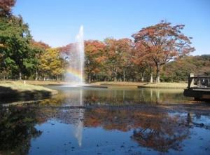 代々木公園.jpg