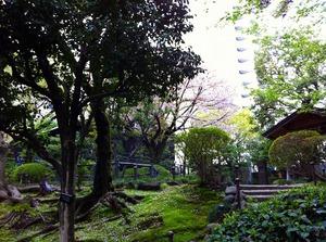 乃木公園1.jpg