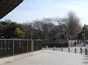 マルモール代々木204 (5).jpg
