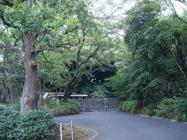 800px-Woods_of_Hitachinomiya_Palace_Tokyo_1.jpg