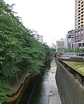 シャトー代官山 (4).jpg