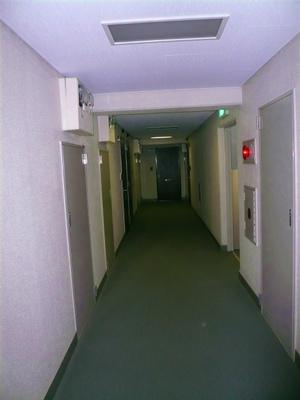 P1100541.jpg
