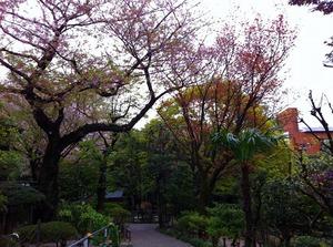 乃木庭園.jpg