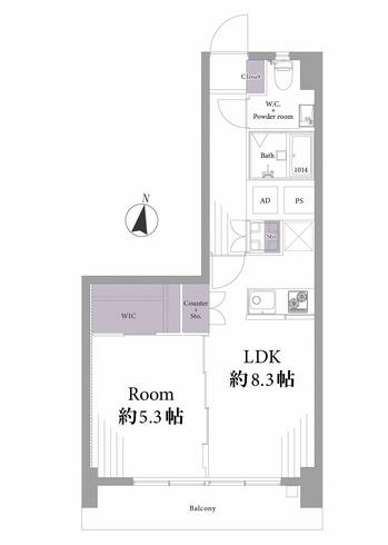 ハイネス麻布303号室 (1) - コピー.jpg