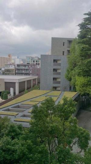 インペリアル広尾504 (1).jpg