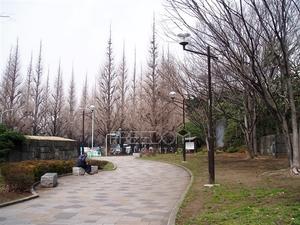 ranzyeaoyama3.jpg