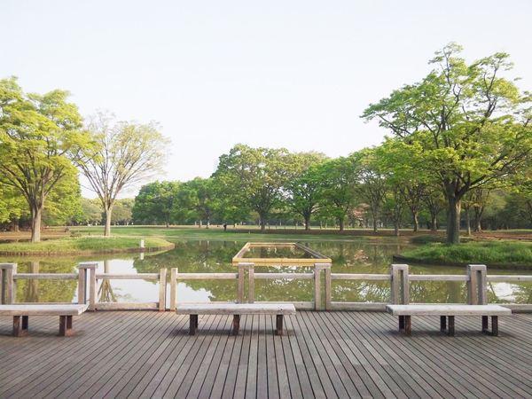 代々木公園 (2)-thumb-600x450-48811