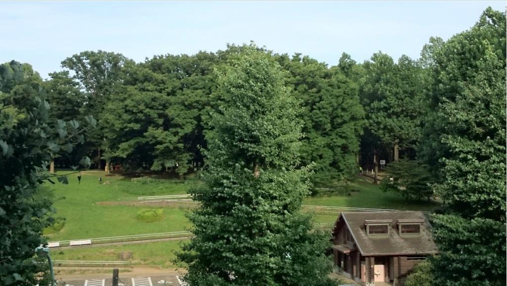 パークサイド代々木公園景色1