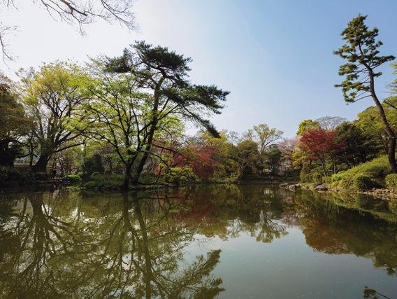 有栖川宮記念公園.jpg