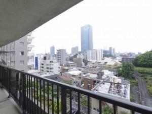 赤坂台マンション301号室 (19)