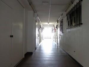 秀和六本木レジデンス-共用廊下