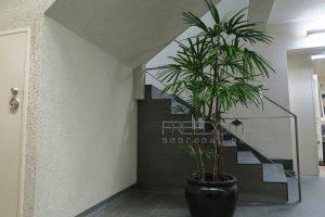 南青山リハイム-外観写真