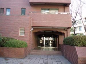 parerowaiyaruminamiaoyama2-thumb