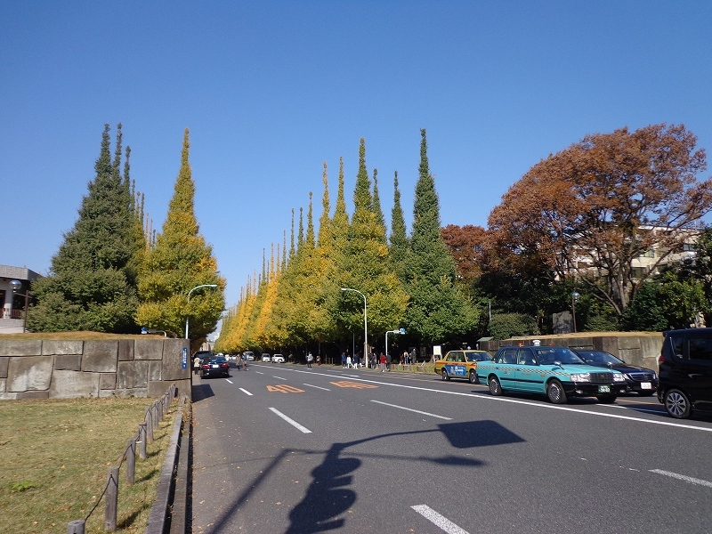 神宮外苑周辺 (1)