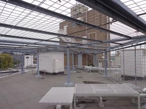 青山コーポラスの屋上