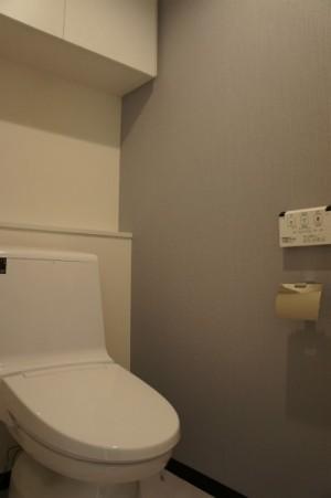 小田急南青山マンション403号室 (18)
