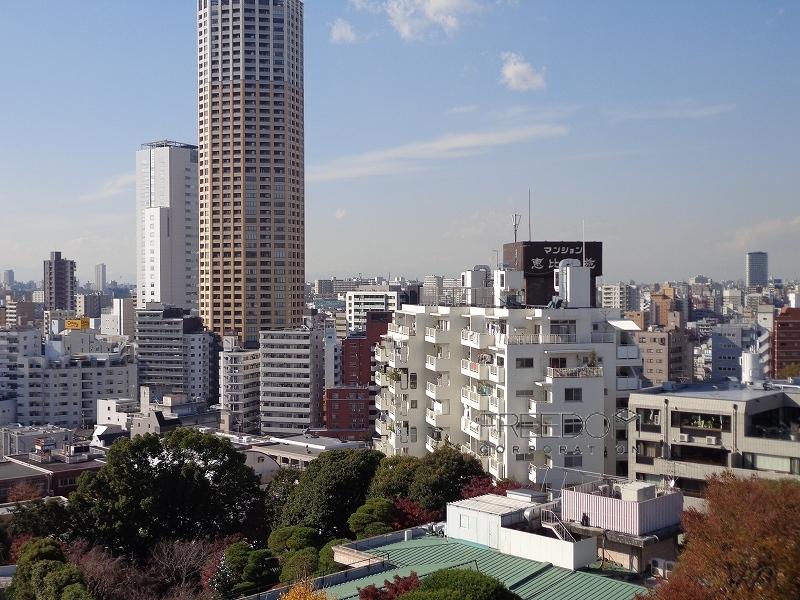 マンション恵比須苑-外観画像