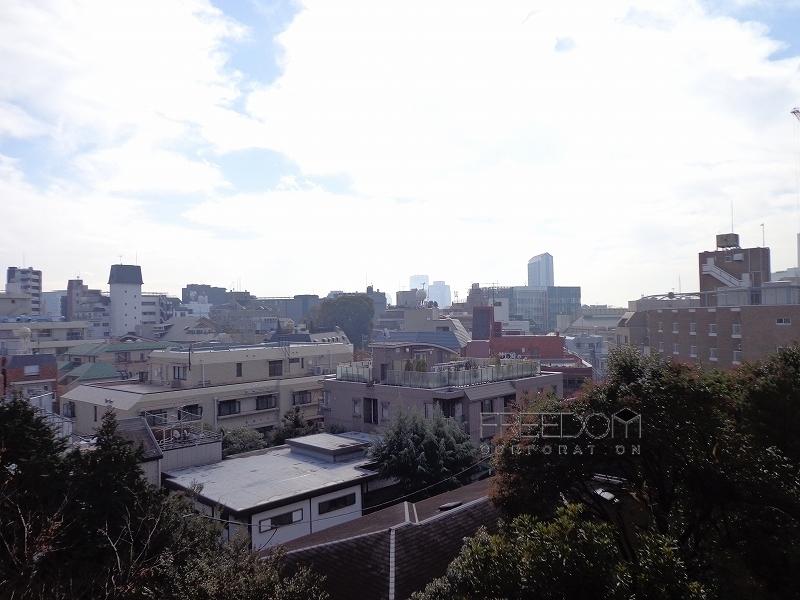 シャトー東洋南青山6F-室内写真 (バルコニー)