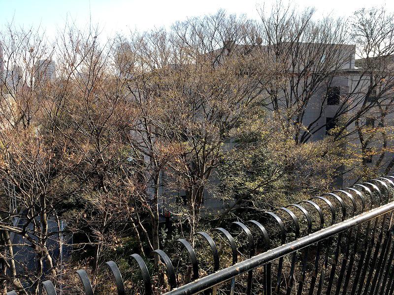 三田綱町2