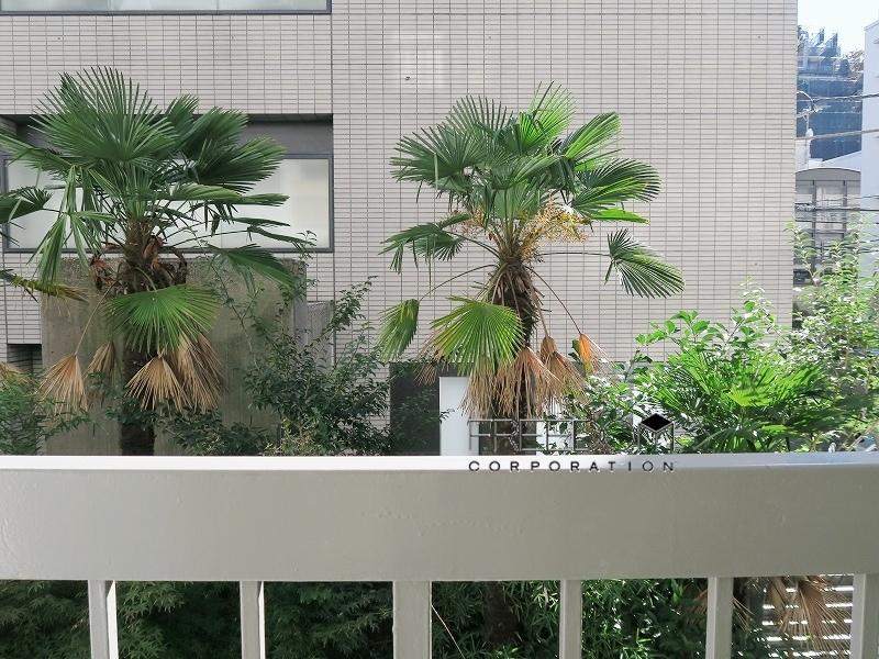 シャトー赤坂_2F室内写真